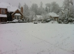 2012-01-15 Snowing in Redmond (1)