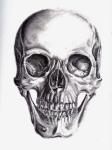 2013-11 Graphite skull by Mia 001