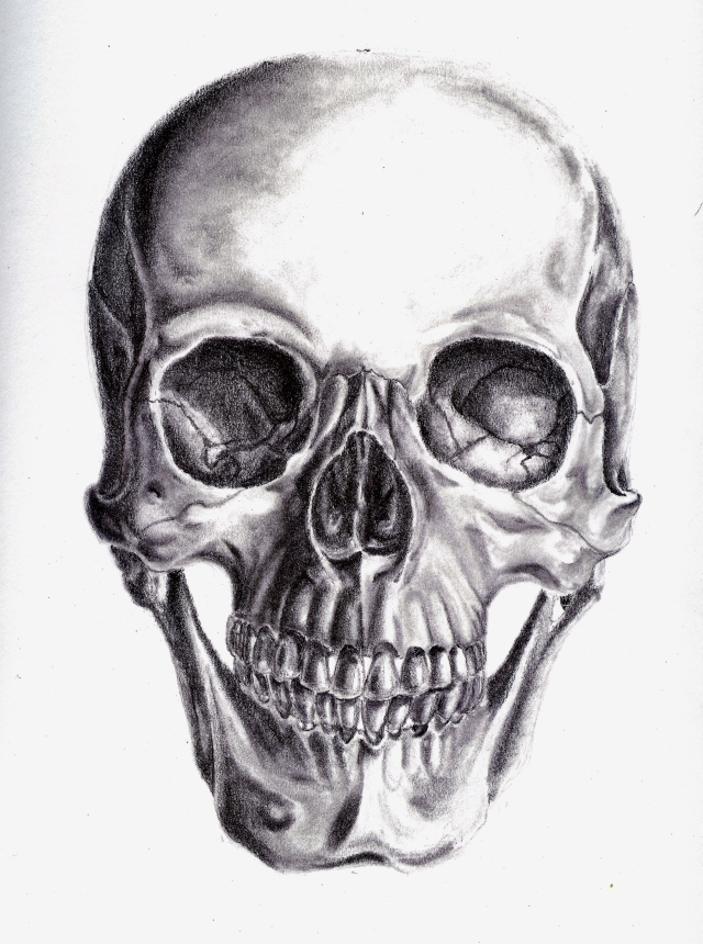 2013-11 Graphite skull by Mia 001